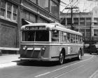 Vehicle Operates As Trackless Trolley Electric Bus Or Gasoline Bus Public Transportation Elizabeth NJ