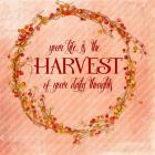 Your Life is the Harvest