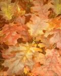 Autumn Dressed Up