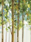 Forest Study I SPC