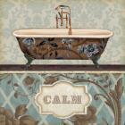 Bathroom Bliss II