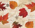 Fall in Love - Autumn Leaves