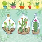 Cacti Garden I no Birds and Butterflies
