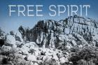 Ombre Adventure VI Free Spirit