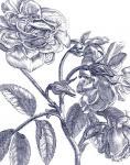 Belle Fleur I Light Crop