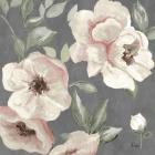 Dusty Rose I
