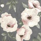 Dusty Rose II