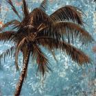 Palm on tourquoise I
