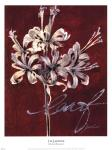 Cabernet Blossoms I