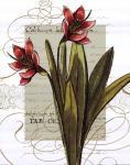 Florilegium III