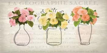 3 Vases | Obraz na stenu