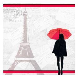 A Night in Paris | Obraz na stenu