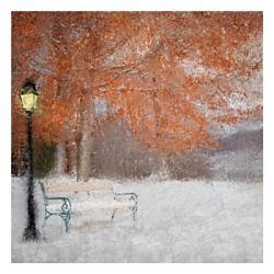 A Change of Seasons | Obraz na stenu