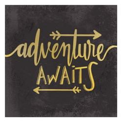 Adventure Awaits 1 | Obraz na stenu