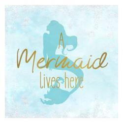 A Mermaid 1   Obraz na stenu