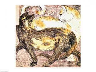 Two Cats   Obraz na stenu