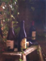 Wine Cellar II | Obraz na stenu