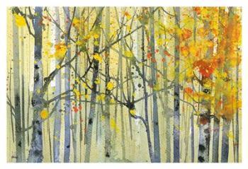 Autumn Birches | Obraz na stenu