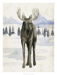 Alaskan Wilderness I   Obraz na stenu