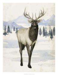 Alaskan Wilderness II | Obraz na stenu