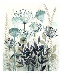 Allayed Floral II   Obraz na stenu