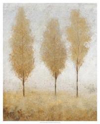 Autumn Springs I | Obraz na stenu