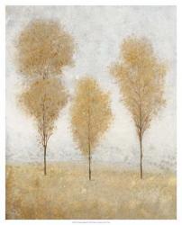 Autumn Springs II | Obraz na stenu