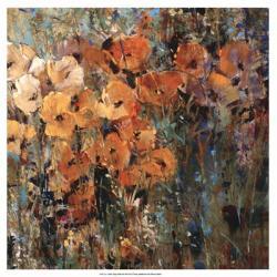 Amber Poppy Field II | Obraz na stenu