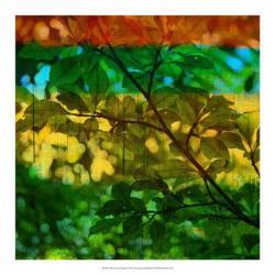 Abstract Leaf Study I | Obraz na stenu