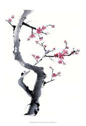 Plum Blossom Branch I | Obraz na stenu