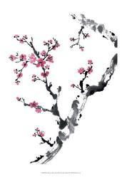 Plum Blossom Branch II | Obraz na stenu