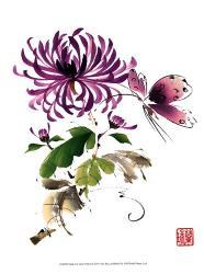 Purple Passion | Obraz na stenu