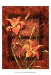 Day Lily II | Obraz na stenu