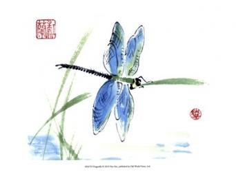 Dragonfly | Obraz na stenu