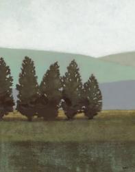 Evergreen I | Obraz na stenu