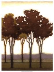 Arboreal Grove II | Obraz na stenu