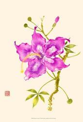 Hibiscus Flower I | Obraz na stenu