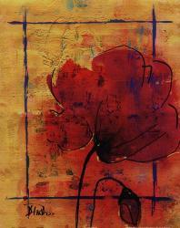 Artistic Poppy II | Obraz na stenu