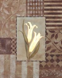 Aqua Calla Lily W- White | Obraz na stenu