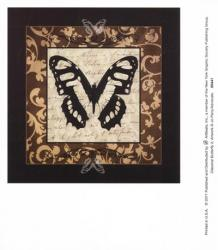Classical Butterfly II | Obraz na stenu