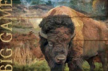 Big Game Bison | Obraz na stenu