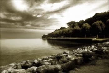 #2 Seacliff Shoreline | Obraz na stenu