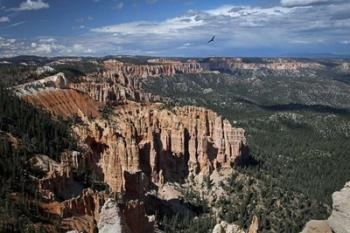 #214 Soaring over Bryce