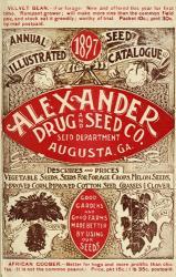Alexander Seed | Obraz na stenu