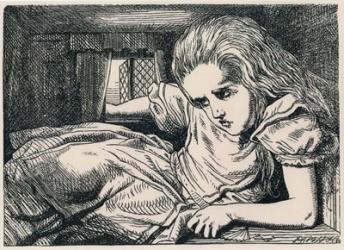 Alice In Wonderland   Obraz na stenu