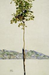 Horse Chestnut Tree, Lake Constance. 1912 | Obraz na stenu