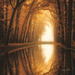 Lochem Reflections | Obraz na stenu