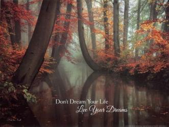 Live Your Dream | Obraz na stenu