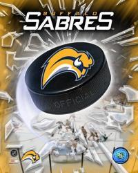 '06 / '07 - Sabres Team Logo | Obraz na stenu