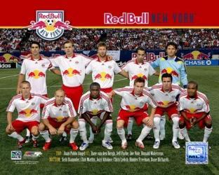 '07 N.Y. Red Bulls Team - #44 | Obraz na stenu